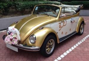 懷舊款甲蟲車(開篷 金色) 3小時 $2280 OT $600/小時