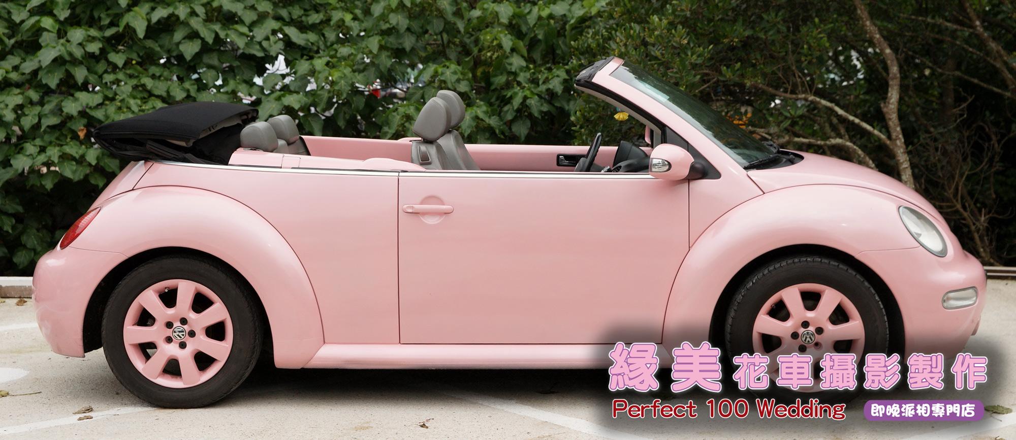 甲蟲-淺粉紅-4e